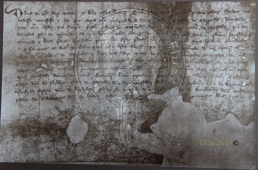 Mouswald Manuscript copyrighted.jpg